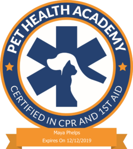 Dog's True Dream Pet CPR Certification Badge